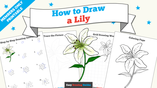 download a printable PDF of Lily drawing tutorial
