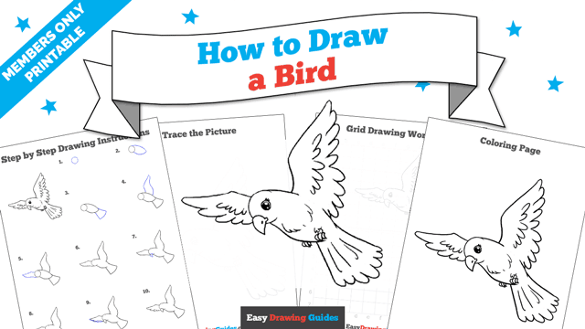 download a printable PDF of Bird drawing tutorial