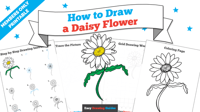 download a printable PDF of Daisy Flower drawing tutorial