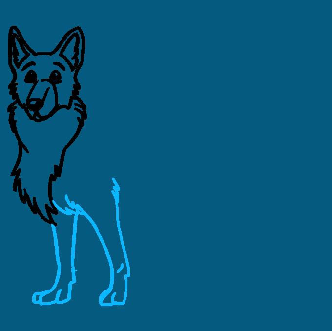 How to Draw German Shepherd: Step 6