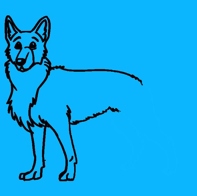 How to Draw German Shepherd: Step 8