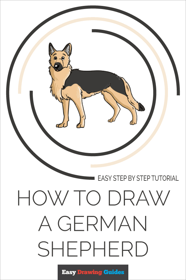 How to Draw German Shepherd | Share to Pinterest