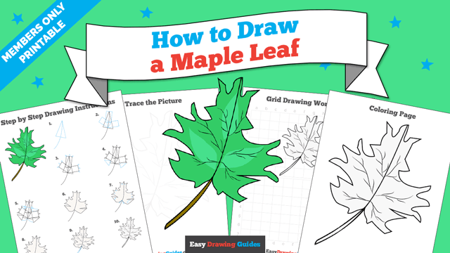 download a printable PDF of Maple Leaf drawing tutorial