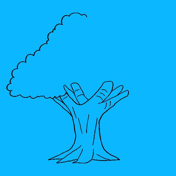 How to Draw Oak Tree: Step 6