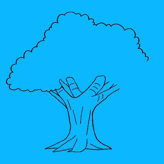 How to Draw Oak Tree: Step 7