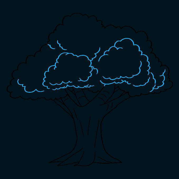 How to Draw Oak Tree: Step 8