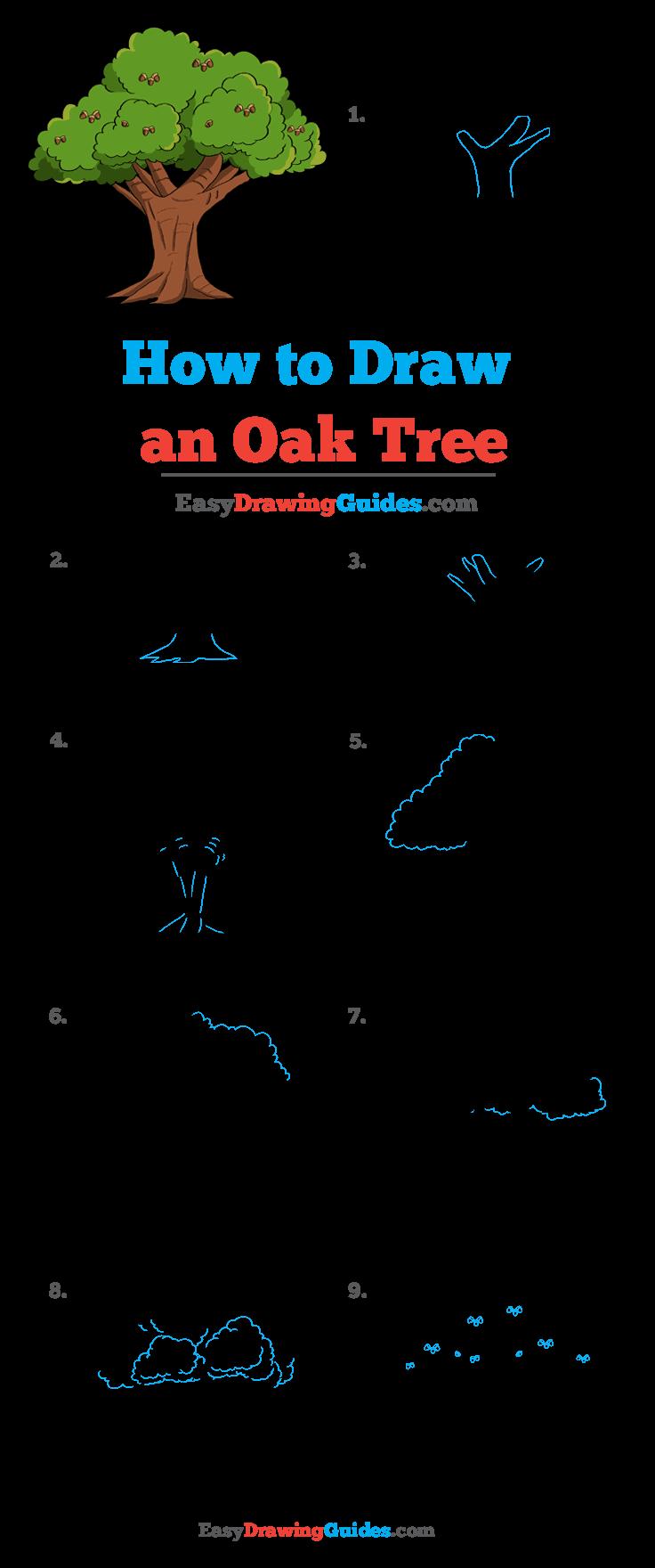 How to Draw Oak Tree