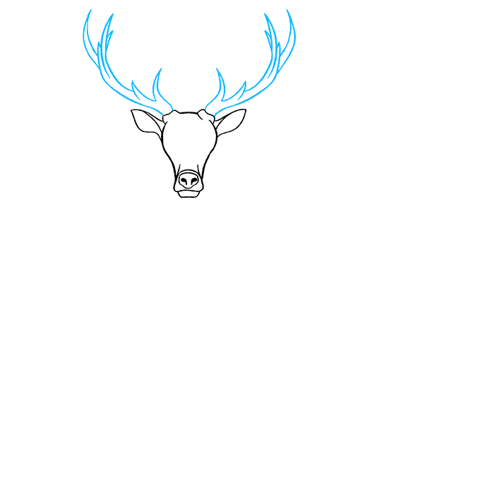 How to Draw Elk: Step 4