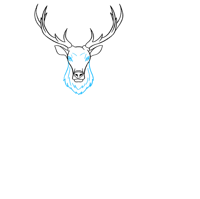 How to Draw Elk: Step 5