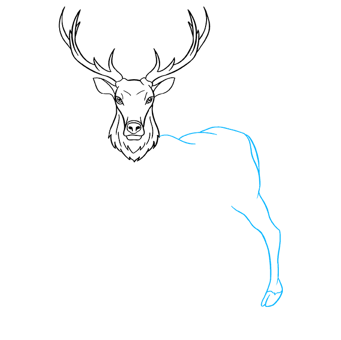 How to Draw Elk: Step 6