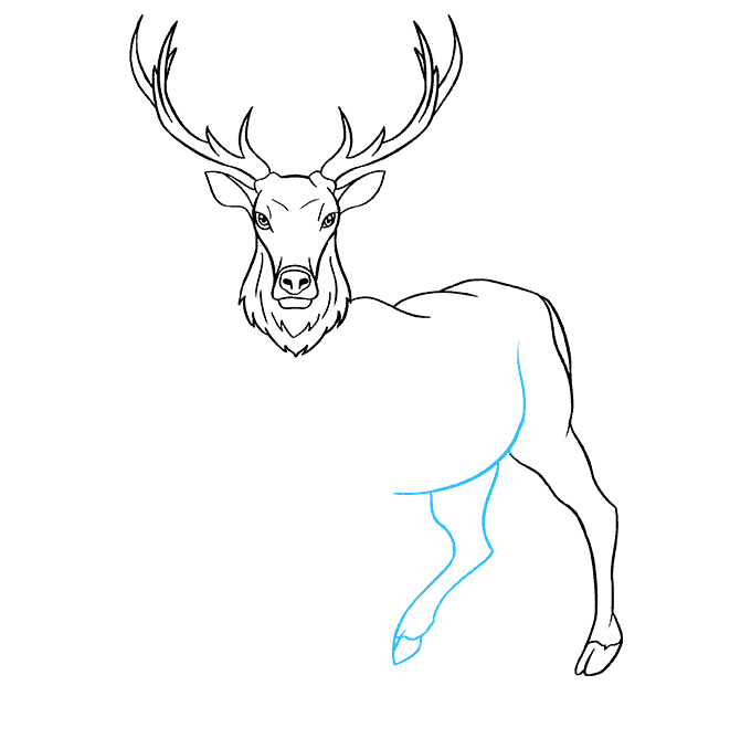 How to Draw Elk: Step 7