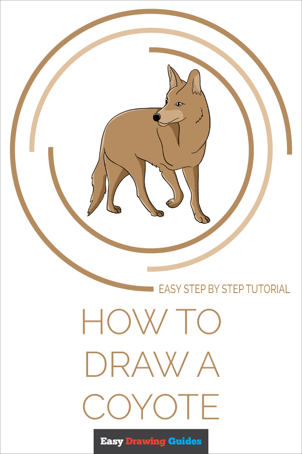 How to Draw Coyote | Share to Pinterest