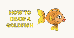 How to Draw a Goldfish Featured Image