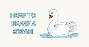 How to Draw a Swan Featured Image