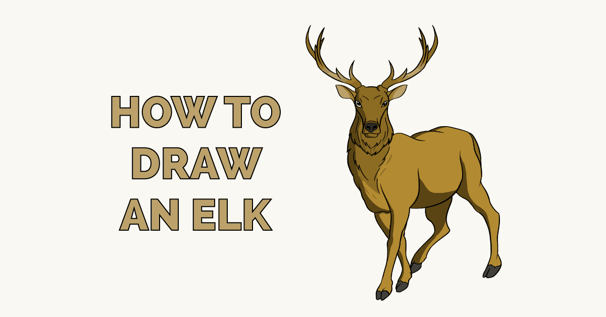 How to Draw an Elk Featured Image