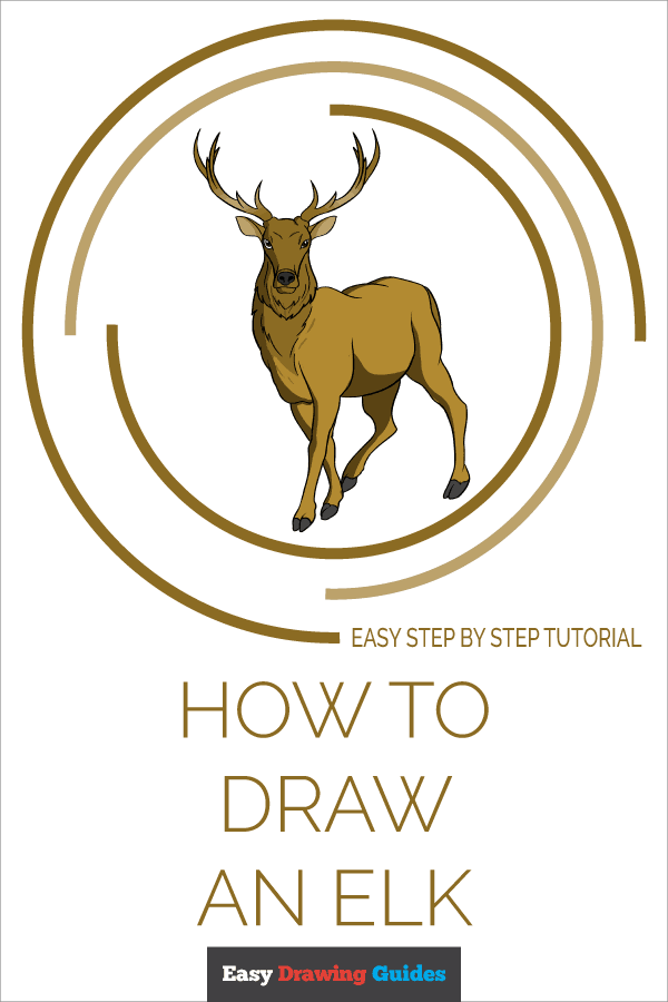 How to Draw an Elk Pinterest Image