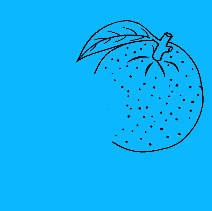 How to Draw Orange: Step 5
