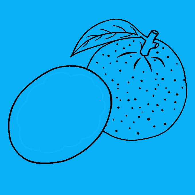 How to Draw Orange: Step 6