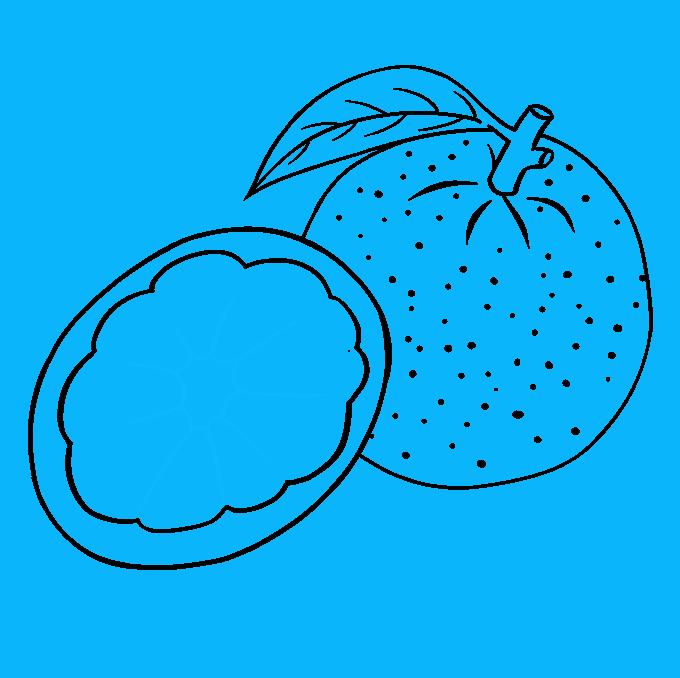 How to Draw Orange: Step 7