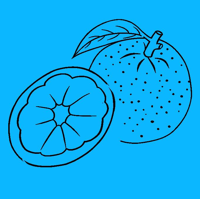 How to Draw Orange: Step 8