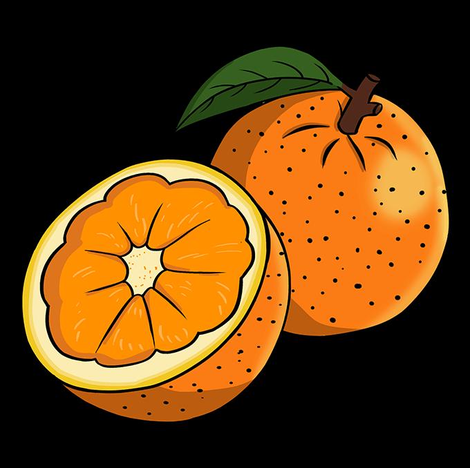How to Draw Orange: Step 10