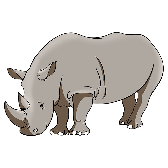 How to Draw Rhino: Step 10