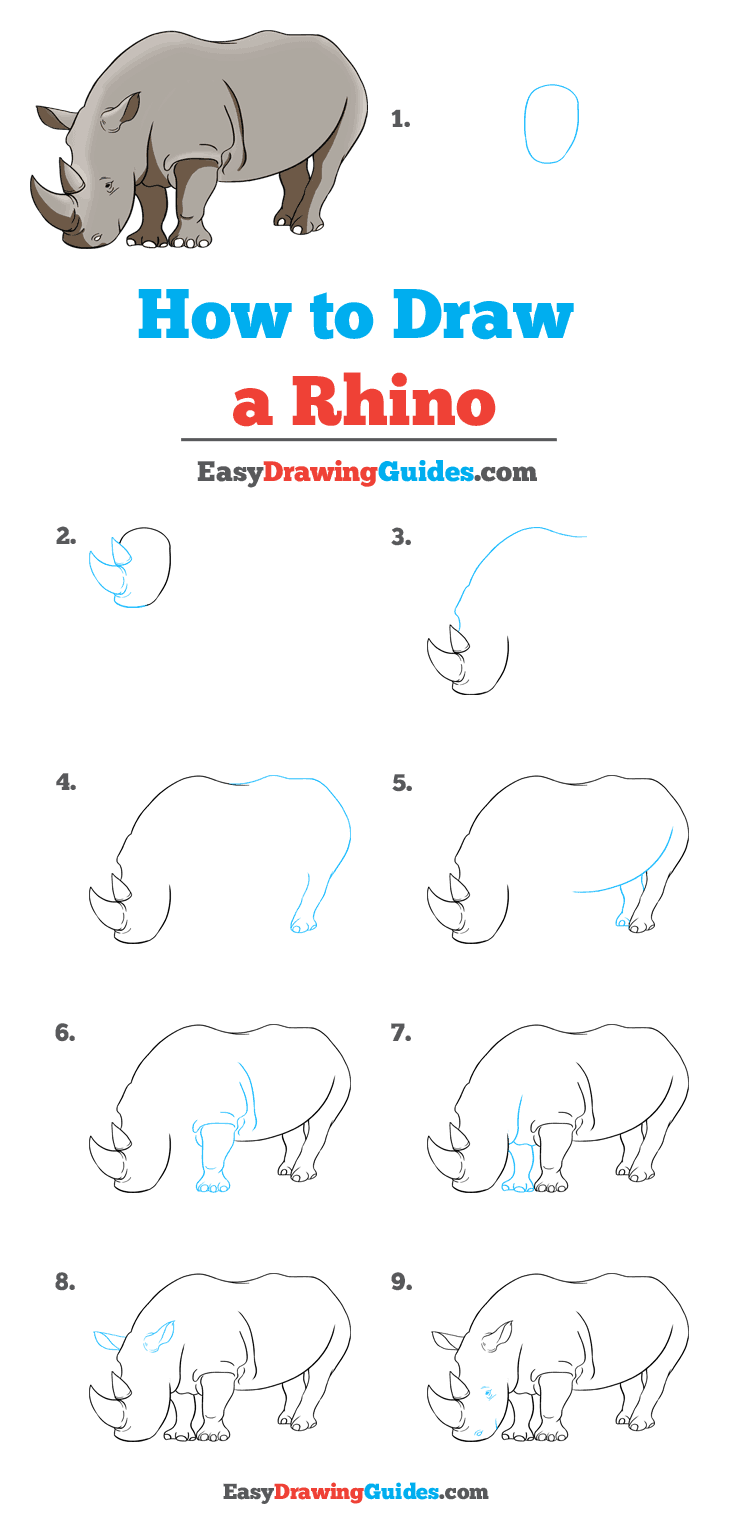 How to Draw Rhino