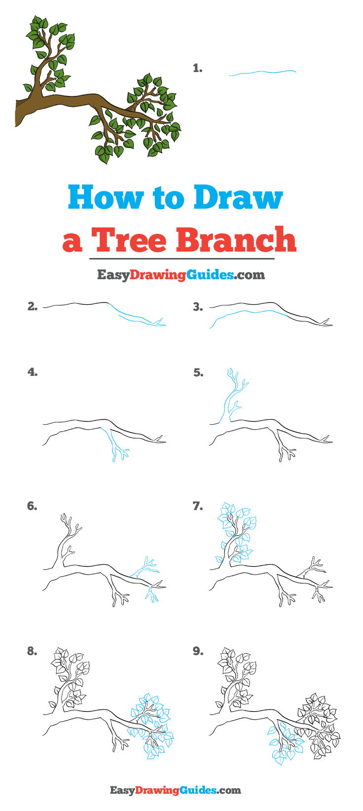 How to Draw Tree Branch