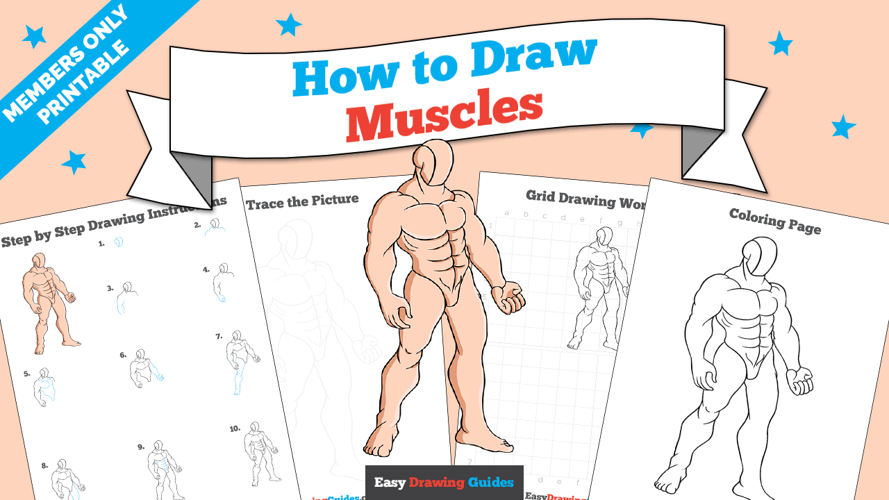 download a printable PDF of Muscles drawing tutorial
