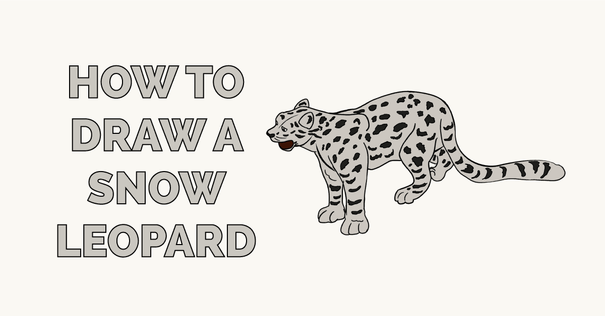 How to Draw a Snow Leopard Featured Image