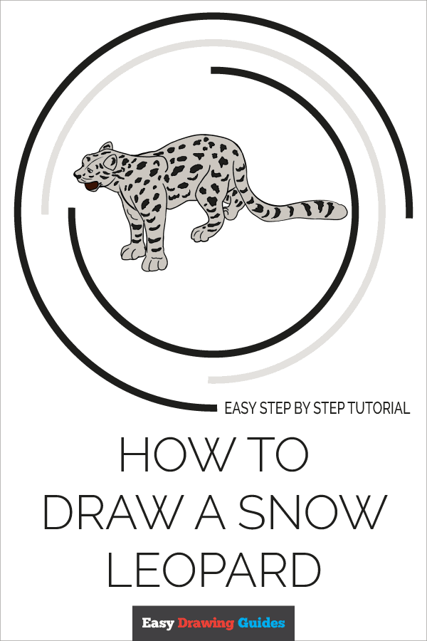 How to Draw a Snow Leopard Pinterest Image