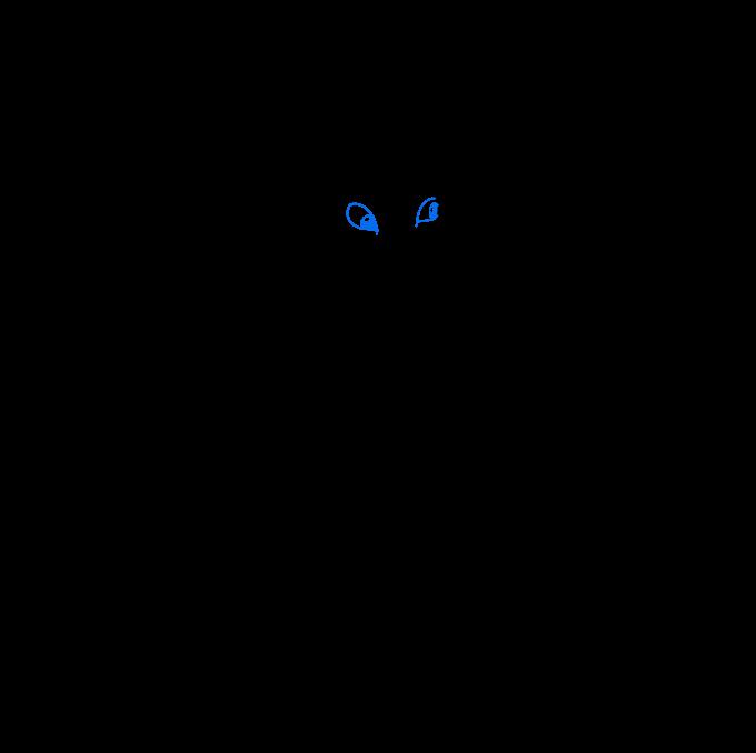 Cómo dibujar Kraken: Paso 8