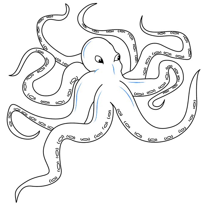 Cómo dibujar Kraken: Paso 9
