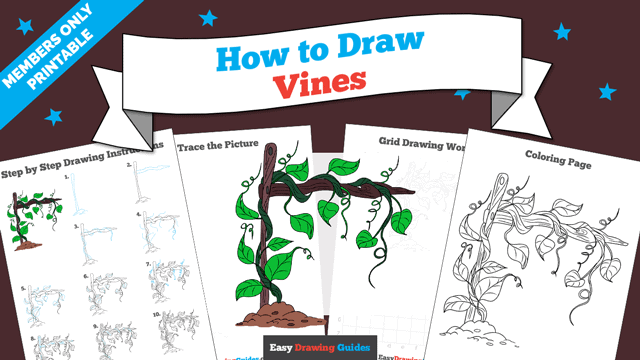 download a printable PDF of Vines drawing tutorial