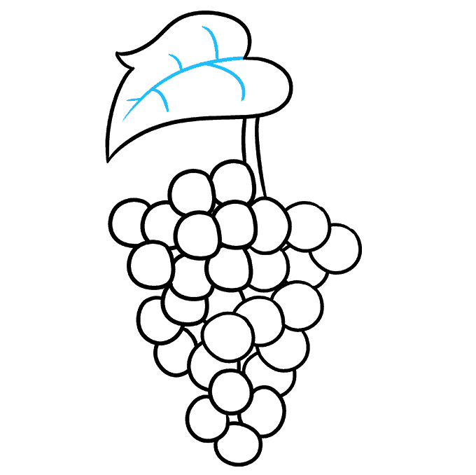 How to Draw Grapes Step 07