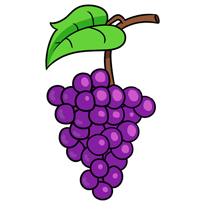 How to Draw Grapes Step 10