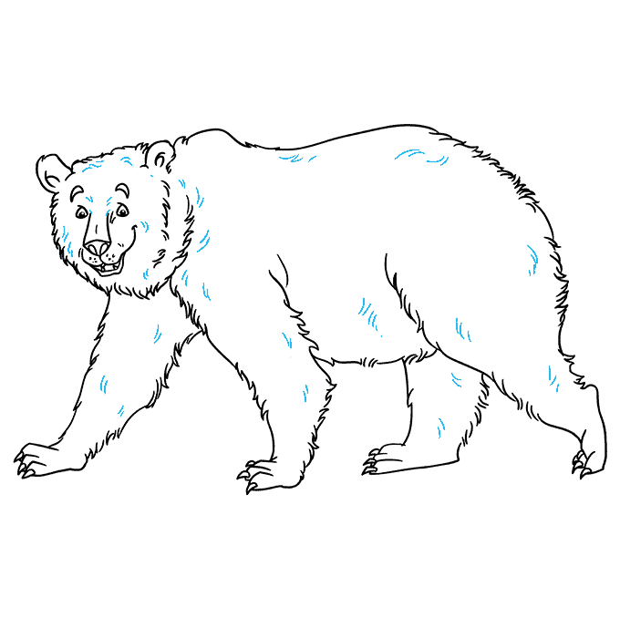 How to Draw Grizzly Bear: Step 9