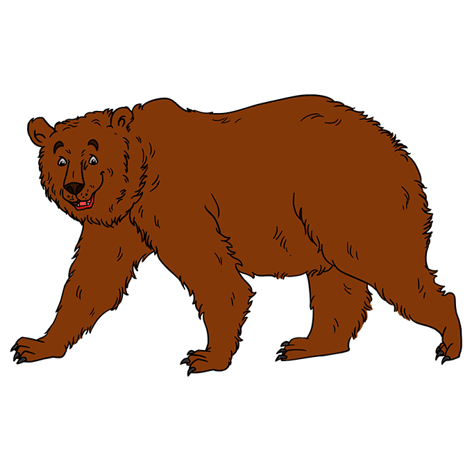 How to Draw Grizzly Bear: Step 10