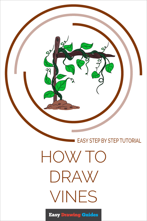 How to Draw Vines Pinterest Image