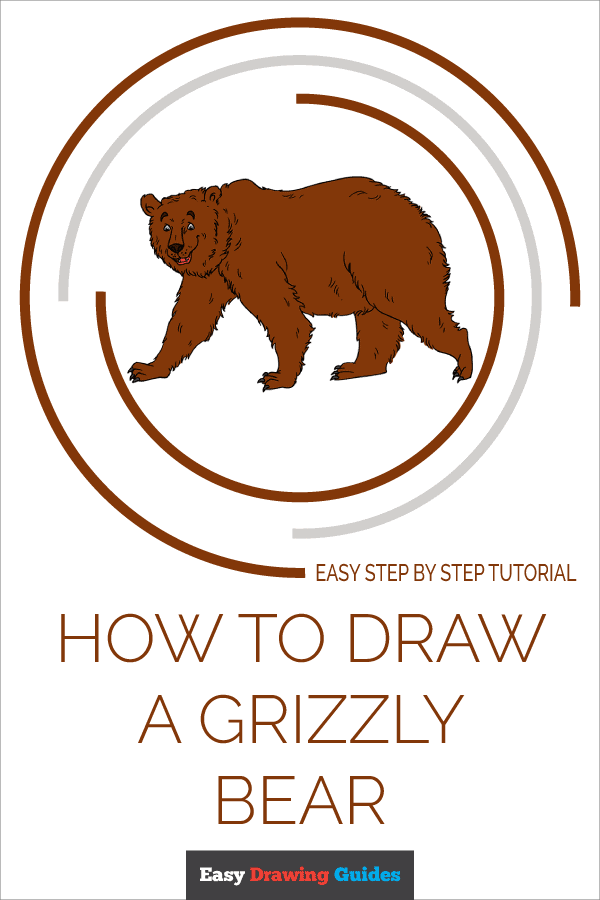 How to Draw Grizzly Bear | Share to Pinterest
