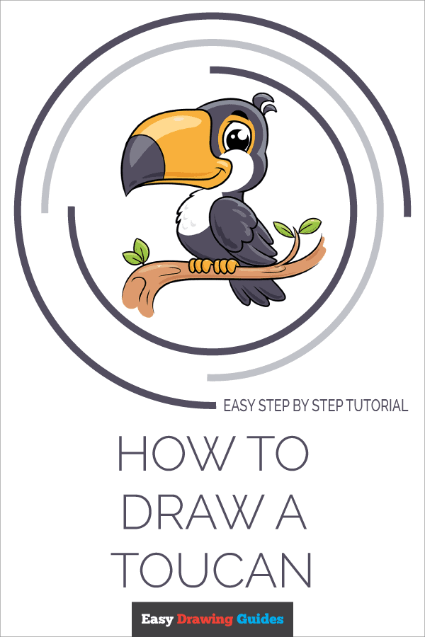 How to Draw Toucan | Share to Pinterest