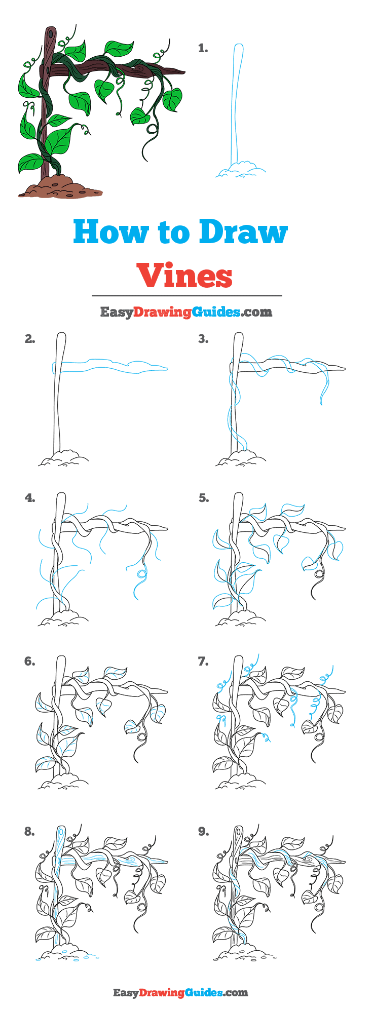 How to Draw Vines Step by Step Tutorial Image