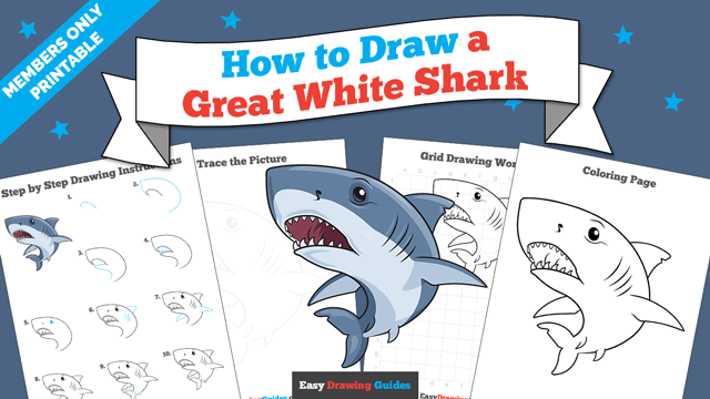 download a printable PDF of Great White Shark drawing tutorial