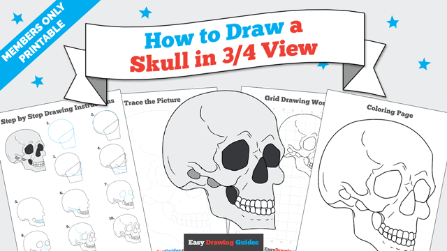download a printable PDF of Skull in 3/4 View drawing tutorial