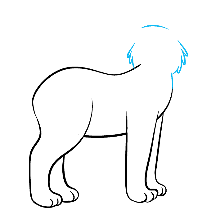 How to Draw Bobcat: Step 4