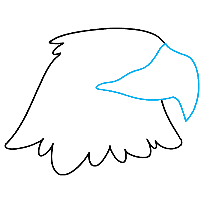 How to Draw Eagle Head: Step 3