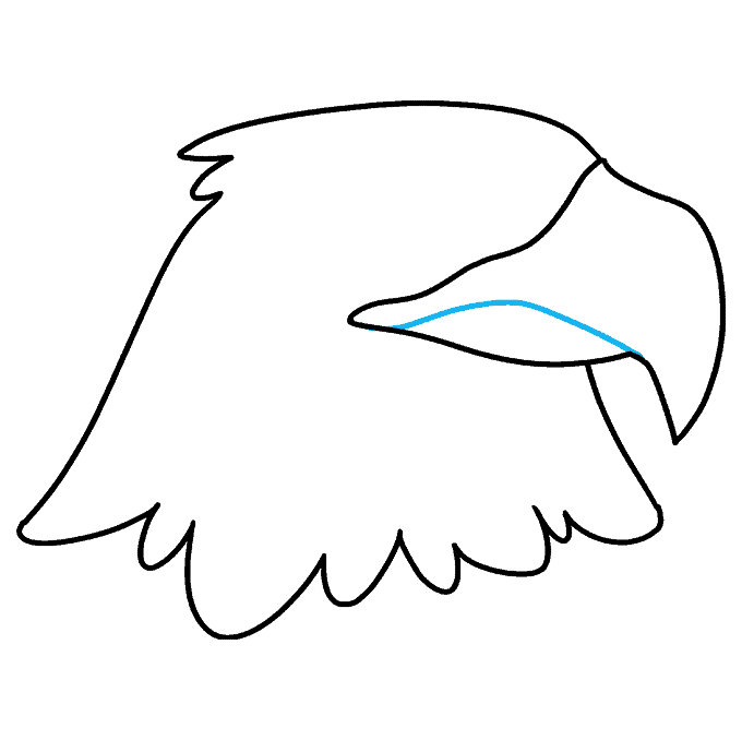 How to Draw Eagle Head: Step 4