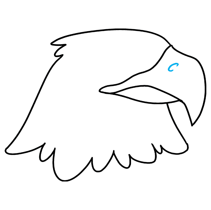 How to Draw Eagle Head: Step 5