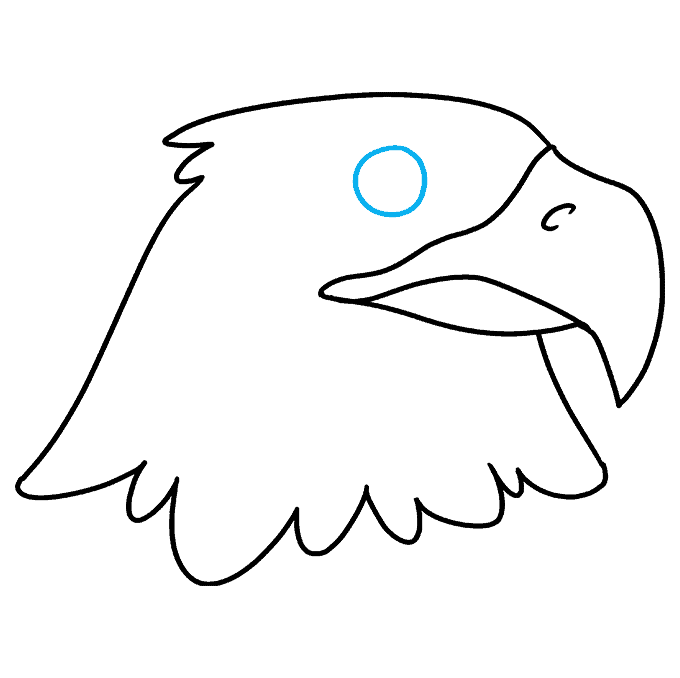 How to Draw Eagle Head: Step 6