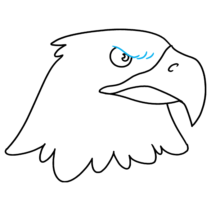 How to Draw Eagle Head: Step 8